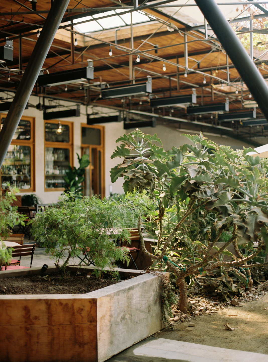 Hauser & Wirth Building Interior with Garden Box and Plants